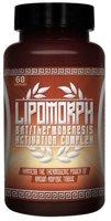 Antaeus Labs LipoMorph
