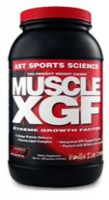 AST Muscle XGF