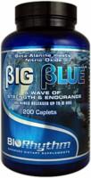 BioRhythm Big Blue