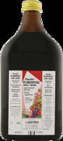 Flora Floradix Floravital Iron + Herbs