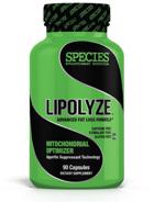 Species Lipolyze