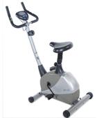 Stamina Products Stamina Magnetic Upright 5325 Exercise Bike